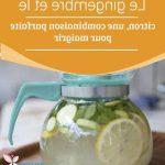 Découvrir Maigrir des cuisses en 3 jours Fiche technique - slimjet