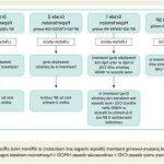 Découvrir Somasnelle Gel - Traitement varice mousse | Notre évaluation