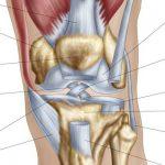 Découvrir Flexa Plus Optima - Douleur articulation du pouce de la main | Avis des testeurs