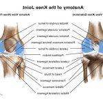 Comparateur Flexa Plus Optima - Douleur articulaire base du pouce | Test complet