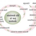 Choisir Hallu Forte - Hallux valgus modéré | Test complet