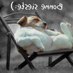 Acheter My Dodow - Hypnose dormir comme un chat   Avis des experts
