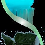 Découvrez soin: Blanchiment dent jean coutu | Test & opinions