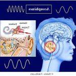 Découvrez soin: Appareil auditif boulogne sur mer | Qualité Prix