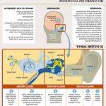 Découvrez Auresoil traitement: Appareil auditif nettoyage | Code promo